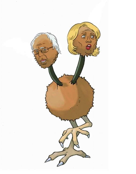 Bernie o Hillary
